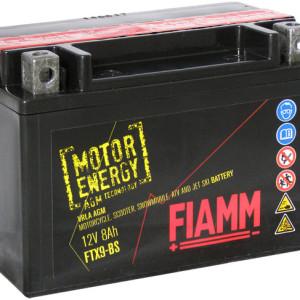 Аккумуляторы FIAMM в Запорожье